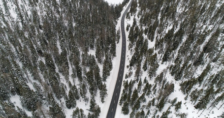 Aerial view of winter forest and asphalt winding road