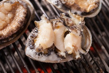 Grilled Abalones 전복구이