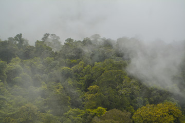 Sea of mist on mountain with tropical rainforest