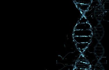 Molecules of DNA