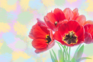 Colorful spring flowers, Bouquet of tulips. Floral motif wallpaper. Soft blur style, drawing effect
