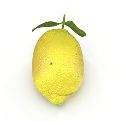 Lemon. Fruit with leaves isolated on white. Front view. 3D illustration