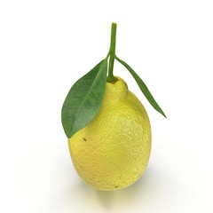 One ripe lemon with leaves on white. 3D illustration