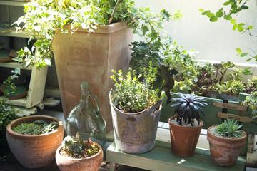 明るい庭 ガーデニングイメージ