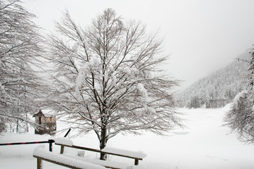 Snowfall on the frozen lake