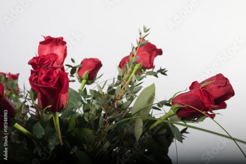 rosen rote rosen blumen natur stockfotos und lizenzfreie bilder auf bild 141348983. Black Bedroom Furniture Sets. Home Design Ideas