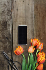 Cell Phone and Tulips