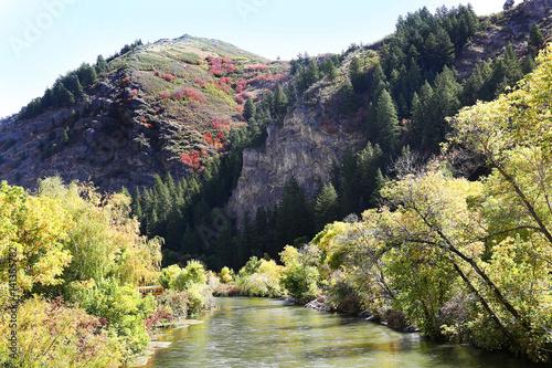 Wall mural Provo River, Utah, with Fall Colors
