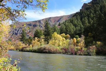 Fototapete - Provo River, Utah, with Fall Colors