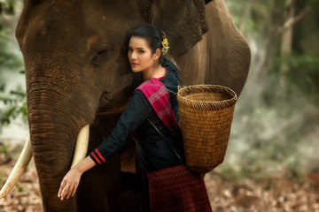 The lives of countryside women with elephant in the forest.