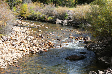 Fototapete - Mountain Stream in Ashley National Forest