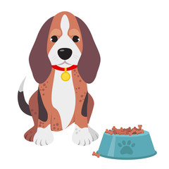 Cute domestic dog beagle breed on the white background. Vector illustration
