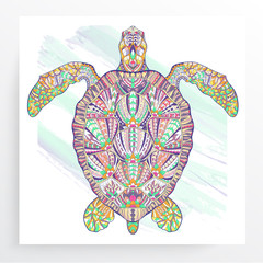Patterned turtle