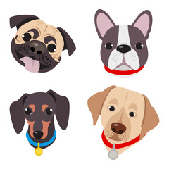 Vector illustration, set of funny head of purebred dogs, on a white background. Different type head of cartoon dogs.