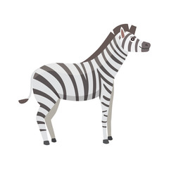 happy cut cartoon zebra isolated illustration. African mammal animal.