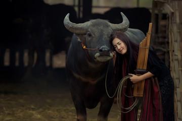 Asian women with buffalo, Thai musical instrument