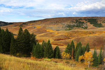 Fototapete - Fall Colors in Mountain Landscape