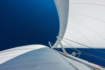 Foto op Aluminium Zeilen Sailing yacht catamaran sailing in the sea. Sailboat. Sailing.