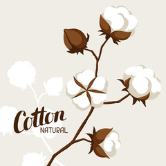 Background with cotton bolls and branches. Stylized illustration