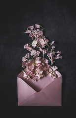Flowers on black background. Flat lay, top view