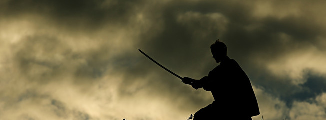 Warrior with sword panorama silhouette