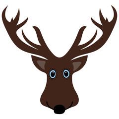 Cute funny deer head cartoon