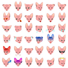 Sphynx Cat Emoji Emoticon Expression