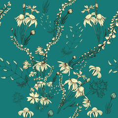 Seamless pattern. Vector. A bouquet of wild flowers and herbs, chamomile, peas. Background image.