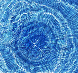 blue x-ray image of tree trunk with rings and cracks