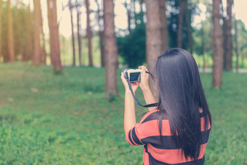 Young female tourist with camera and taking photo in pine forest