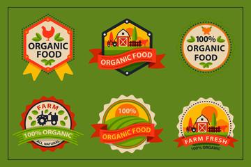 Flat style of bio organic eco healthy food label logo template and vintage vegan farm element in orange green color badge vector illustration.