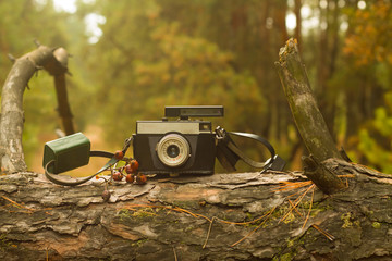 Retro camera on a tree in the woods
