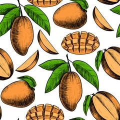 Vector mango hand drawn sketch . Sketch vector  food illustration. Vintage style