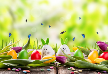 Easter eggs on wooden background. Spring concept on plank. Color mix eggs with nature decoration.