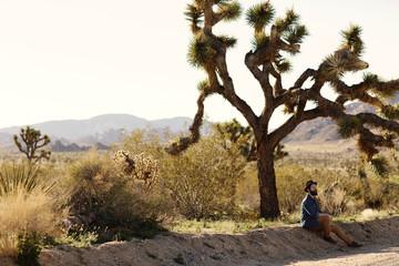Man sitting under tree in desert