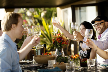 Friends toasting during lunch on patio