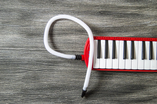 Melodika, melodika pictures, red melodika, keyboard instruments, children musical instrument, music, music education,