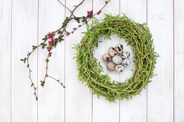 Easter composition of quail eggs in a nest of green willow branches on a white wooden background. Holiday concept with copy space view from above.