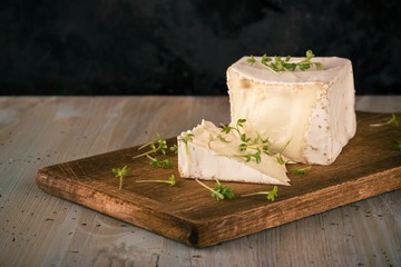 Unusual Camembert cheese with cube shape and green cress