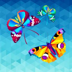 vector, illustration, art, design, white, butterfly, color