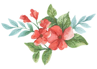 Watercolor painted collection.  Excellent Watercolor pattern with bouquets. Elements for invitation, wedding or greeting cards. Bouquet of red flowers of wild berries.