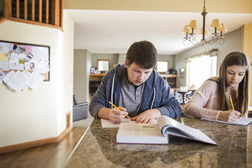 Teenagers (16-17) studying at home