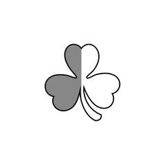 clover saint patrick celebration