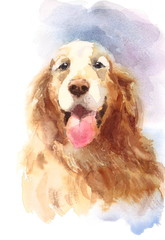 Watercolor Dog Golden Retriever Portrait - Hand Painted Animals Pets Illustration