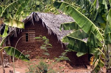 Village, Kinyasini, Zanzibar, Tanzania