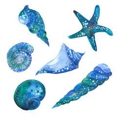 Watercolor blue seashells
