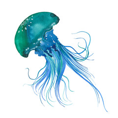 watercolor Blue jellyfish