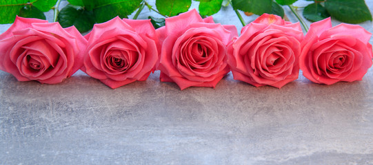 Pink roses. Romantic background. Mother's, Valentines, Women's, Wedding Day. Top view with copy space.  Place for text