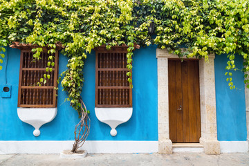A tree grows along the wall of a colonial style building in Cartagena, Colombia.