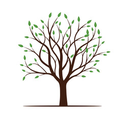 Spring Tree with Green Leafs. Vector Illustration.